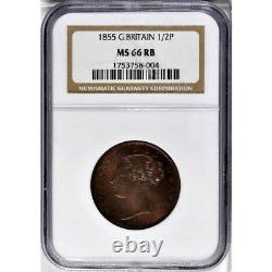 1855 Grande-bretagne 1/2 Penny, Ngc Ms 66 Rb, None Finer @ Ngc & Pcgs, Red Brown